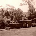 Through the Forests to the Village in the Coffee Pot Train, Herbie North Photo