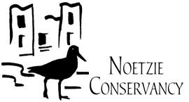 Noetzie logo